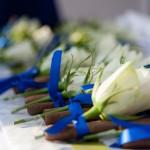 Bruiloft Theo & Eline
