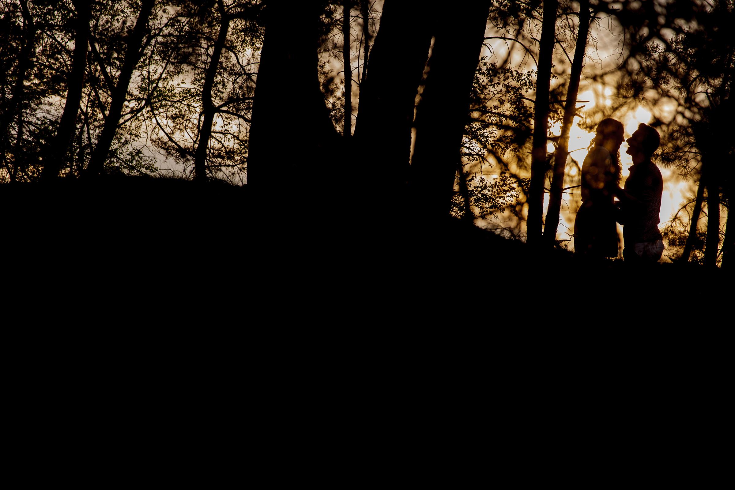 2016 – Hendrik en Alise – Silhouet – Tree's – Sun – 6